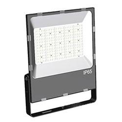 110 volt led flood light